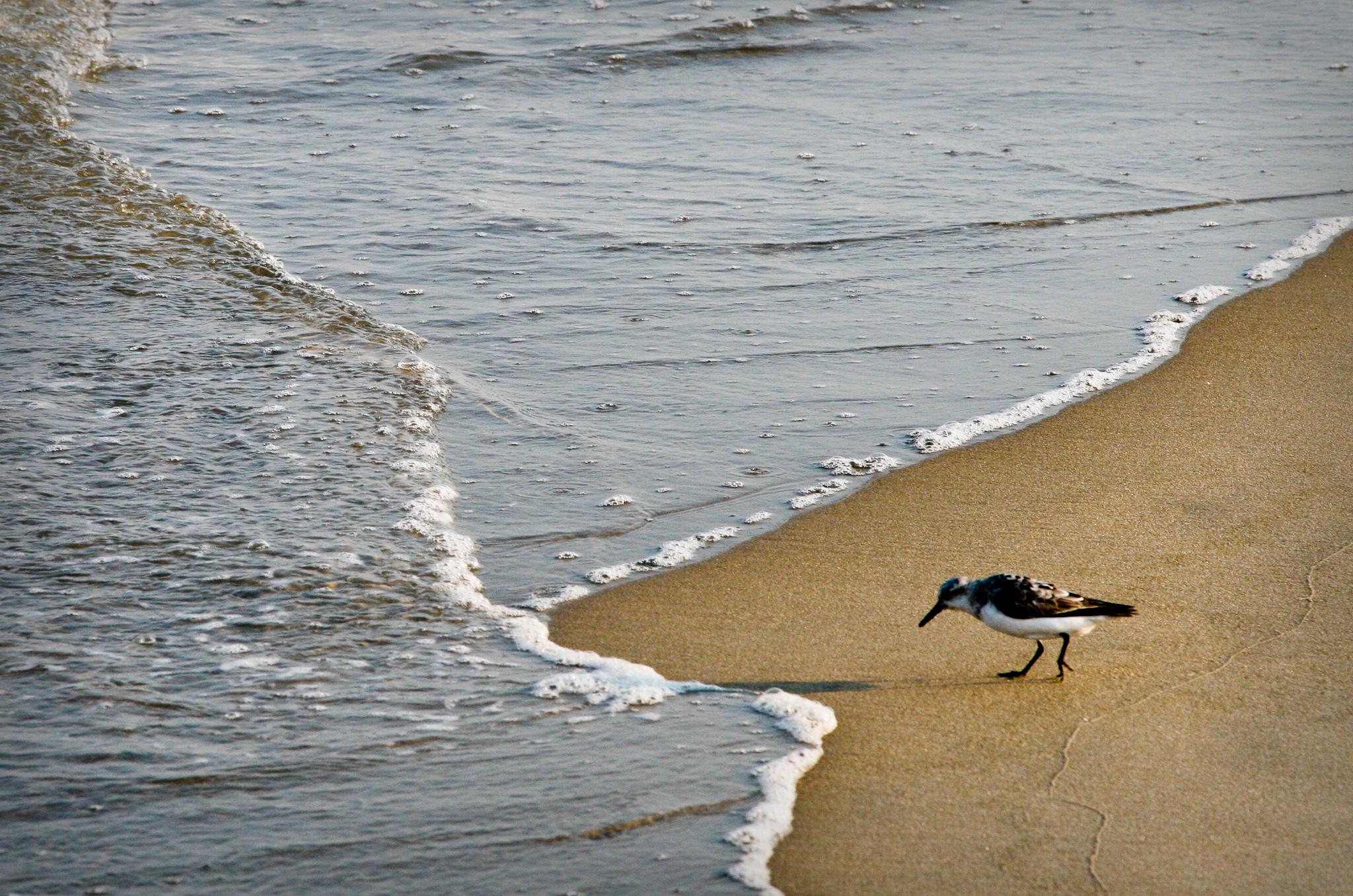 Ocean City, Maryland - September 2007
