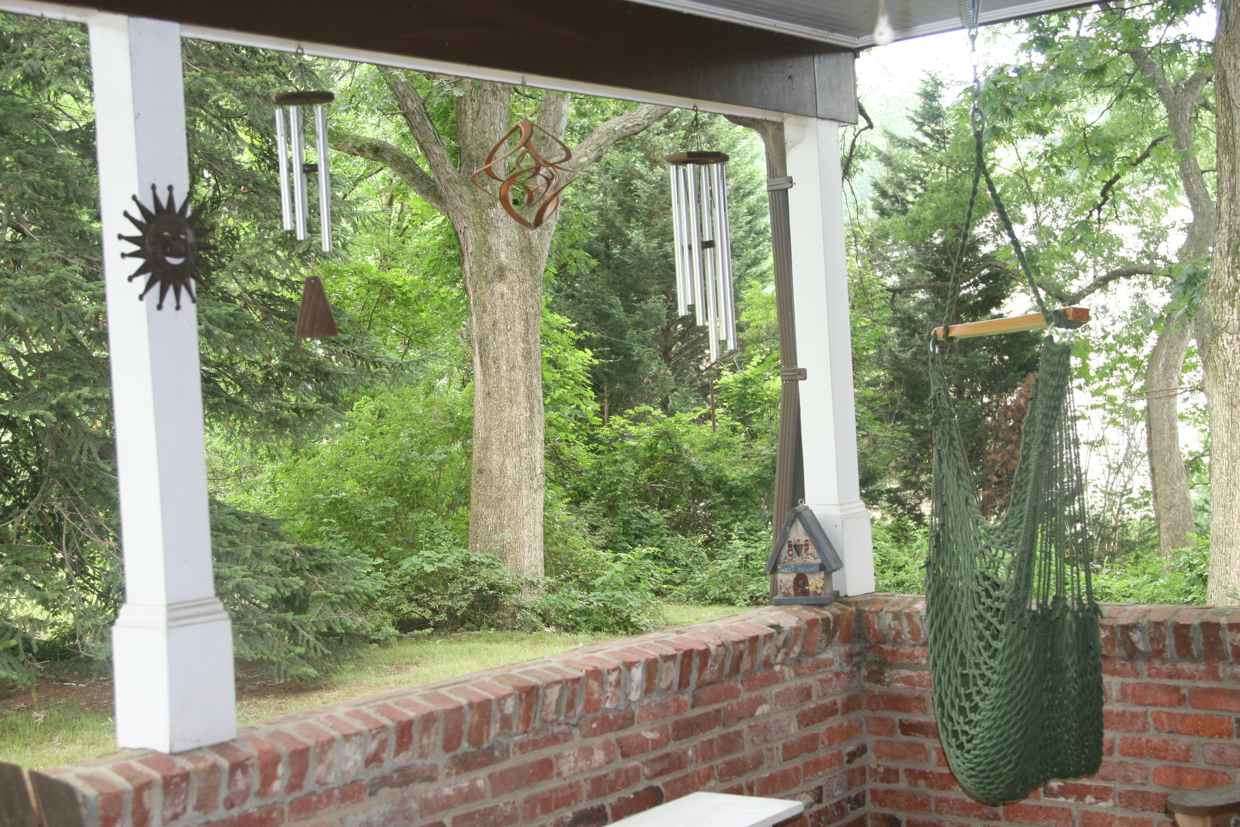 View from my back porch - June 2011