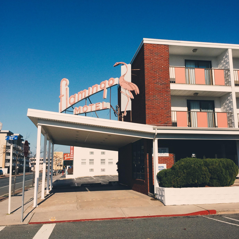 Flamingo Motel - 31st Street Ocean City, Maryland 2016
