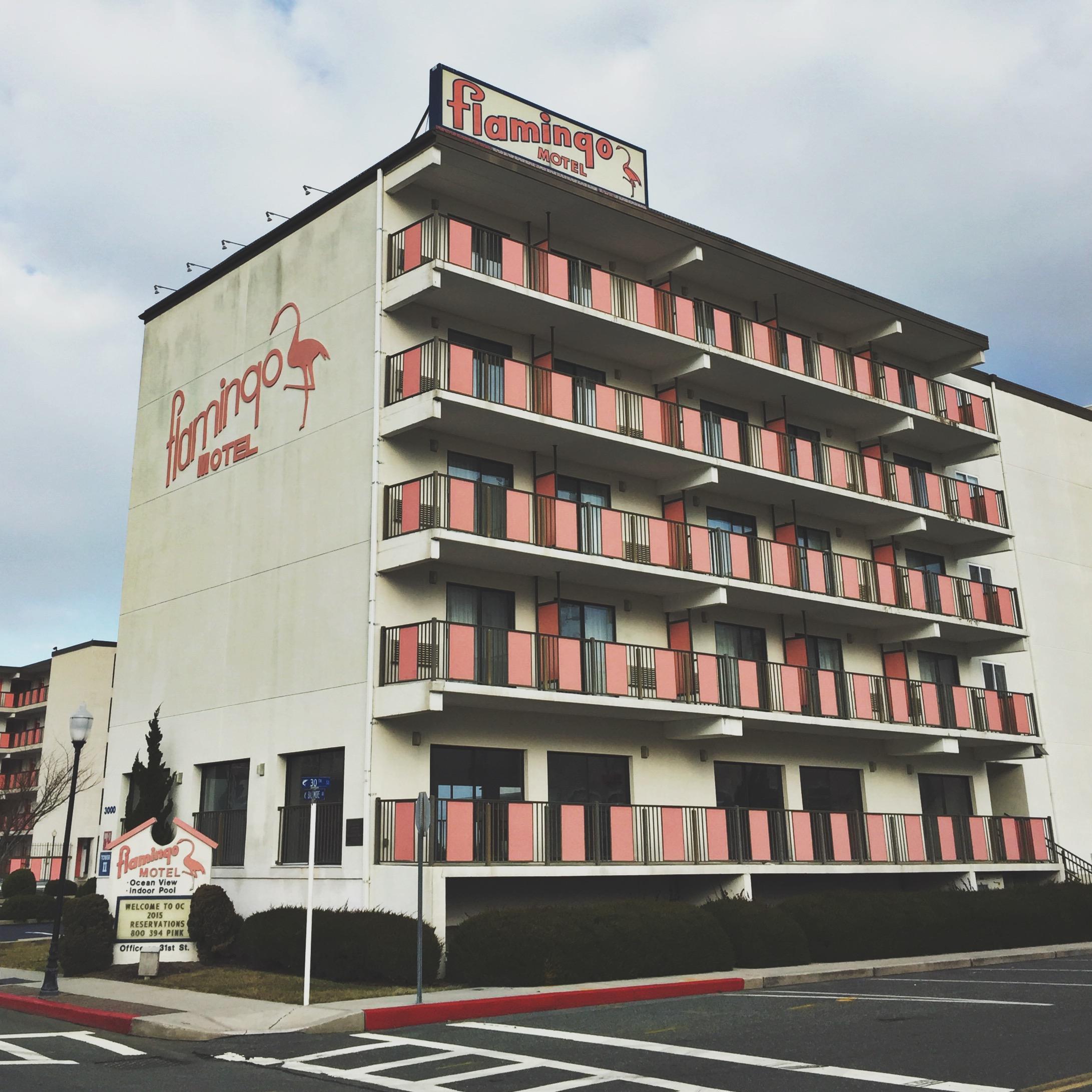 Flamingo Motel - 31st Street Ocean City, Maryland 2015