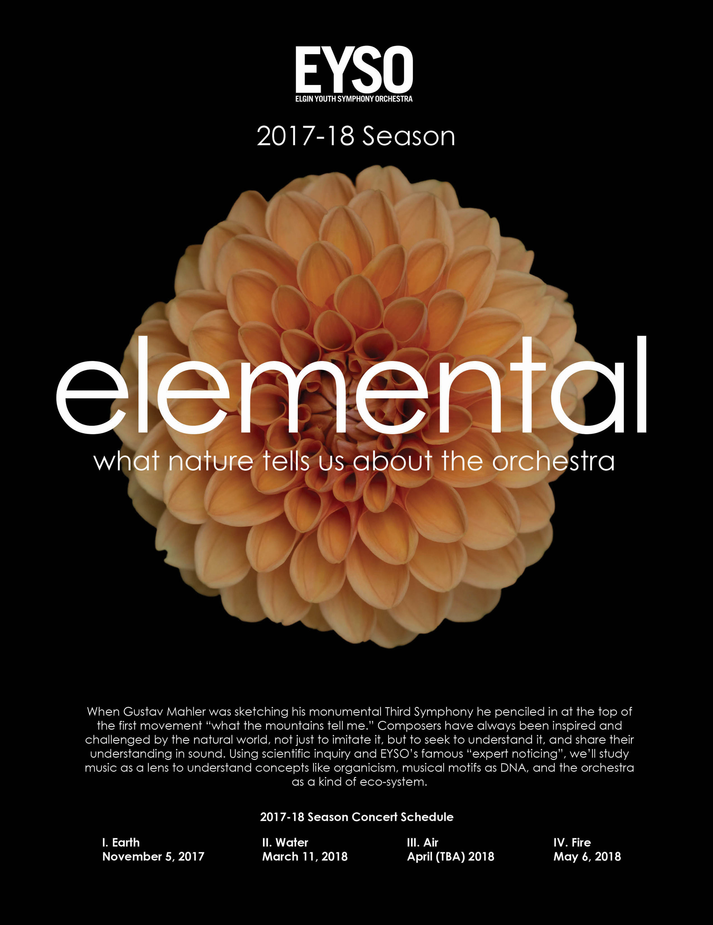 ElementIdea3.jpg