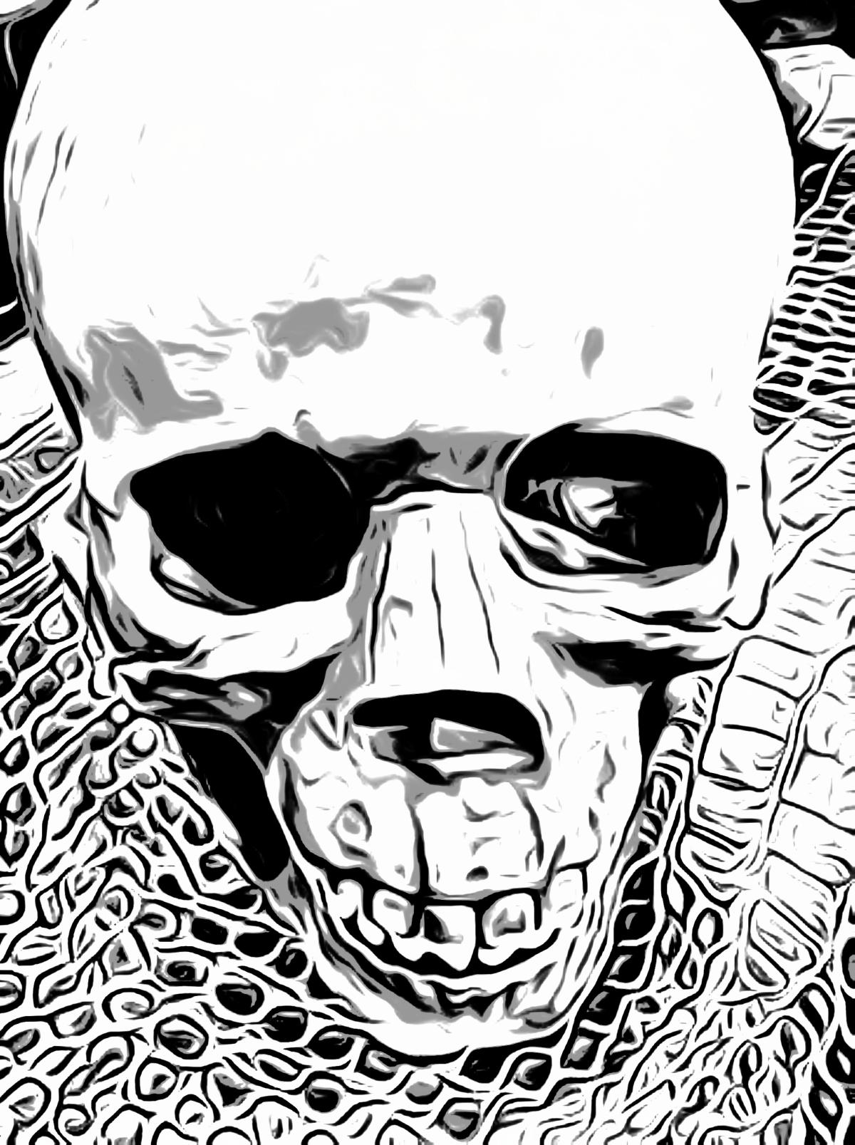 skull-041411.jpg
