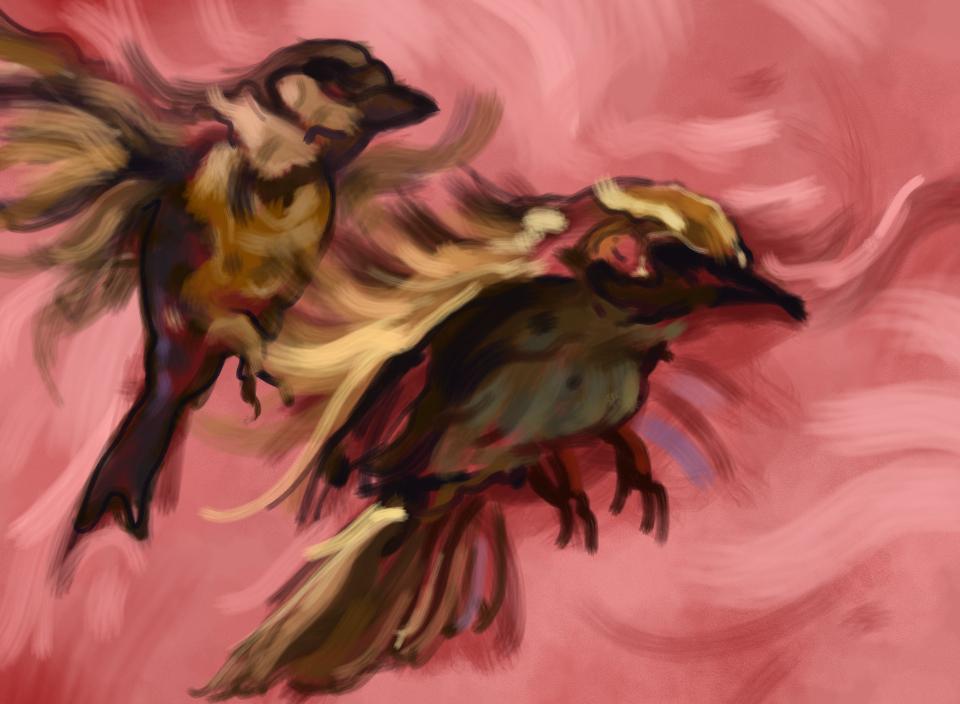 sparrows-painting.jpg