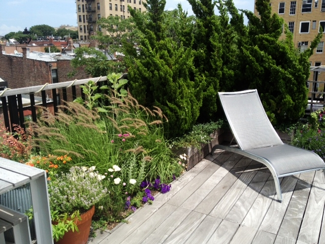 Park Slope Roof Deck - installed 2009