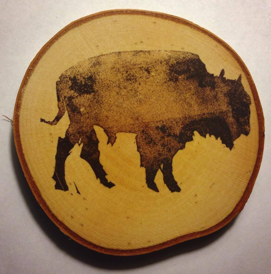Lara Hoke, buffalo coaster