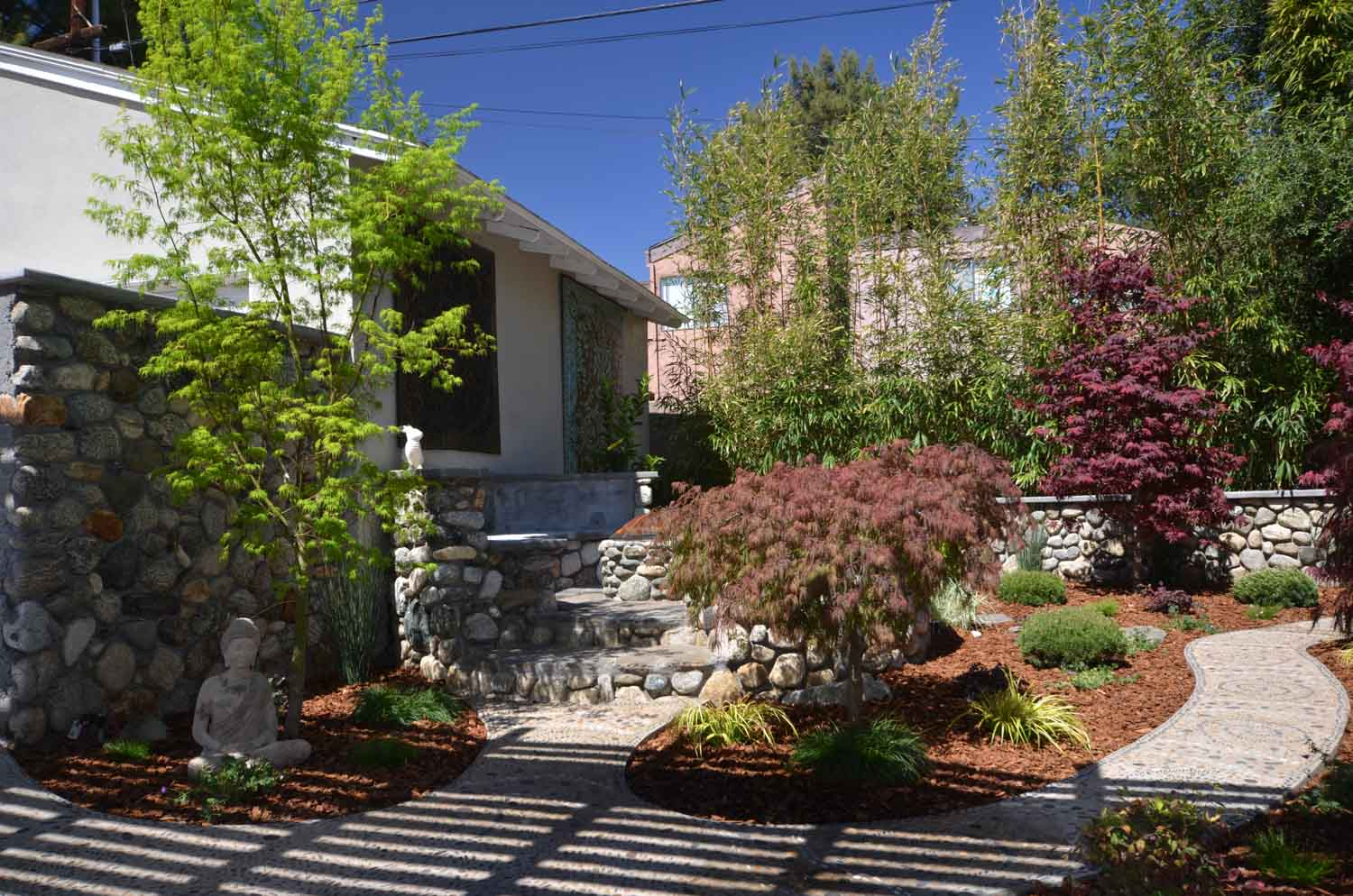 Landscape design with Japanese maples