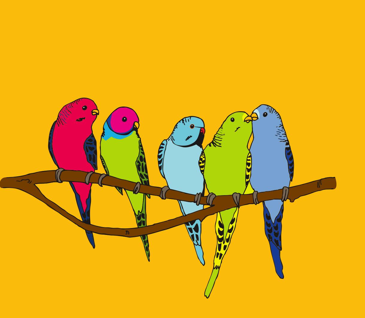 Parakeets illustration detail, 13 oz. bottle.