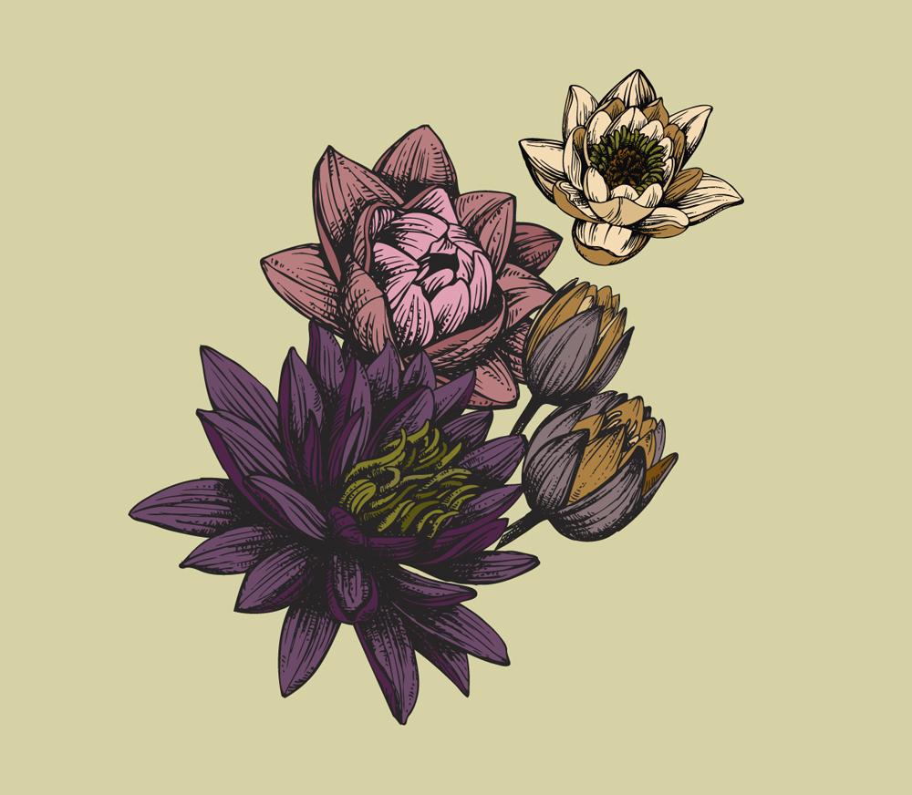 Flowers illustration detail, 20 oz. bottle. Vintage Collection.