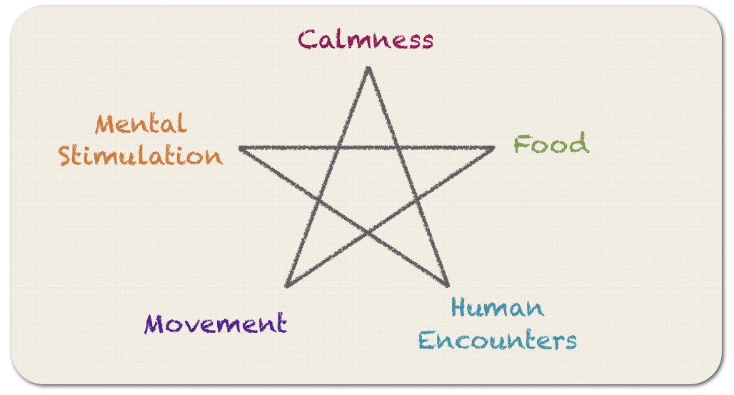 Basic Needs of the Ego.png