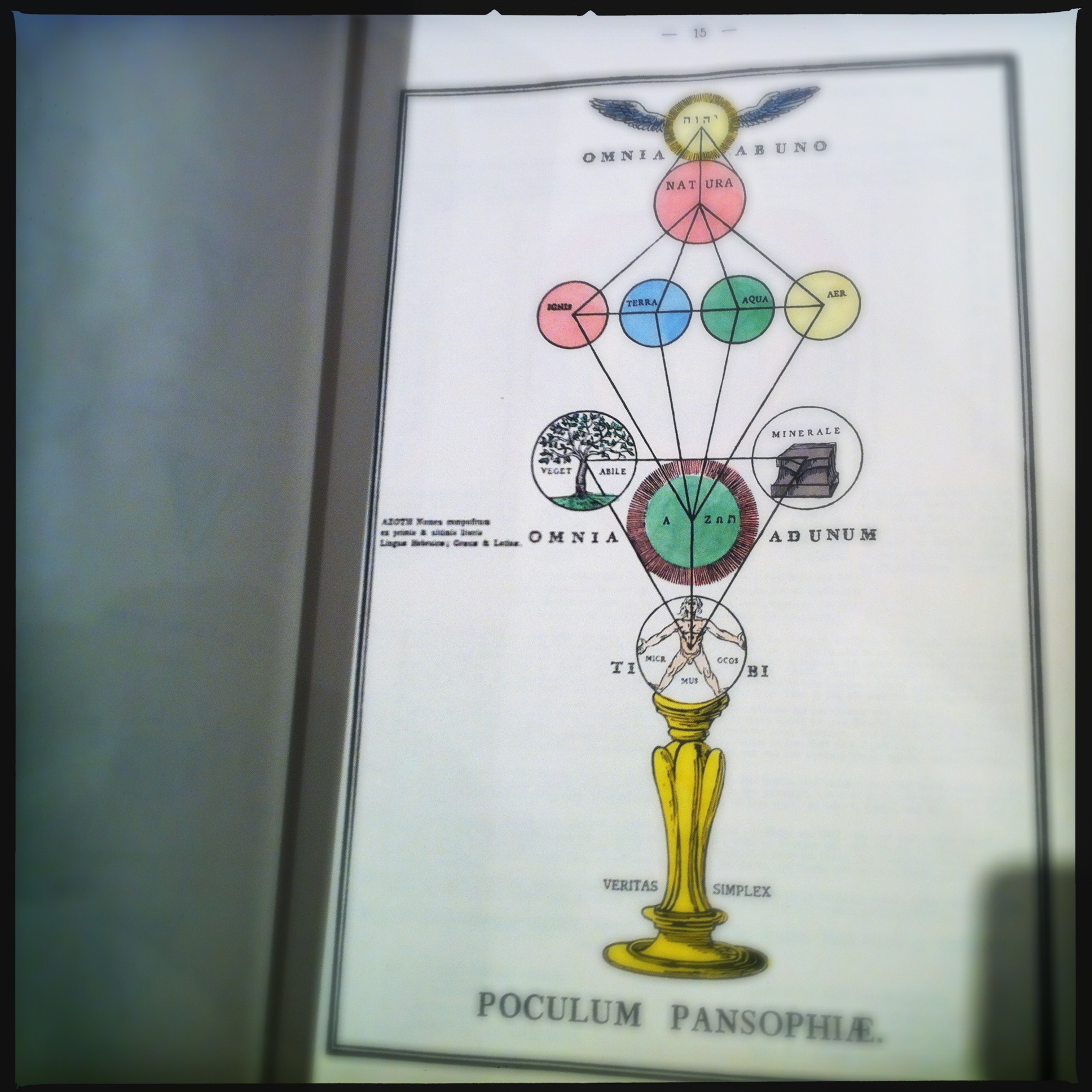 The constitution of man according to the Rosicrucians: 'True Will' wasn't a concept know to them. Rather they understood humans as a magical chalice filled with divine forces of nature itself.