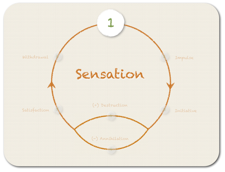 The first step - SENSATION