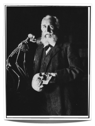 Portrait of famous German biologist Ernst Haeckel - not sure he was prepared to co-create a new life with the living spirits he discovered...
