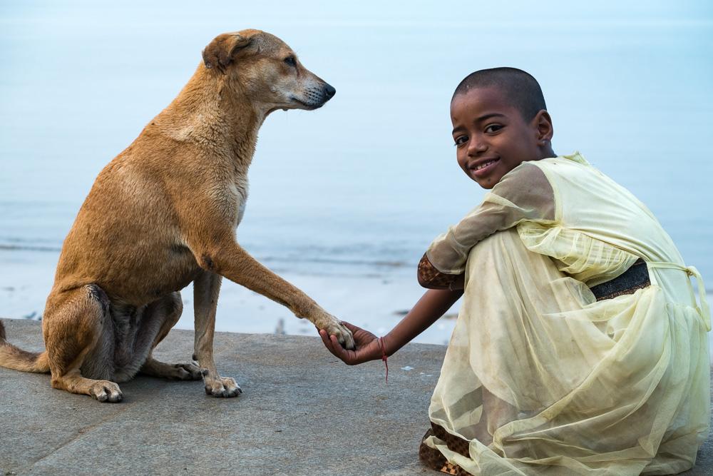A gentleman like dog and the girl