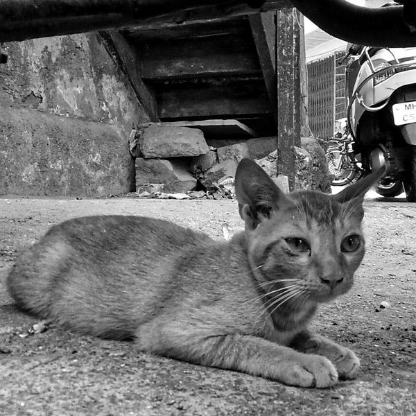 street_Mumbai-7.jpg