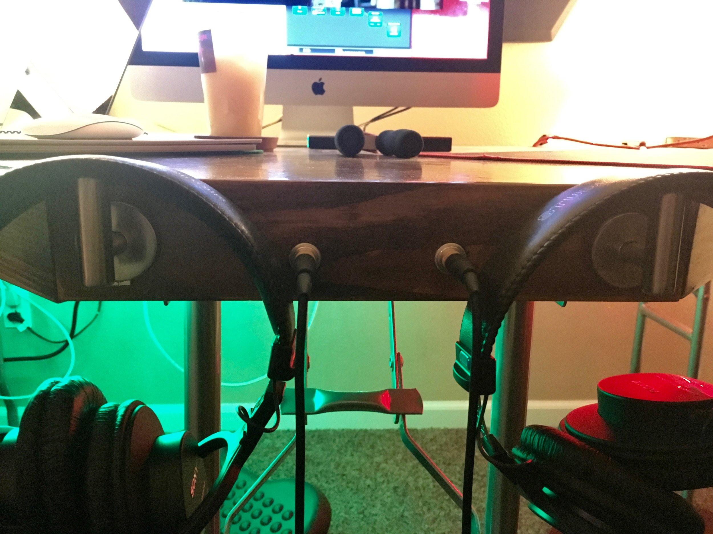 Sony studio monitor MDR7506 headphones. They sound amazing. Also, Benji's footrest.