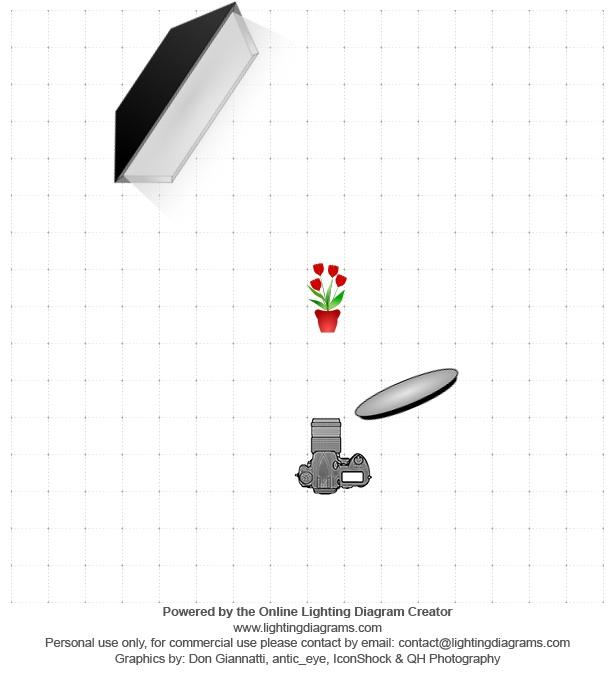 lighting-diagram-1342181674.jpg