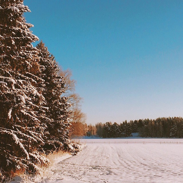 Nature_always_wears_the_colors_of_the_spirit._-_Ralph_Waldo_Emerson___visualsoflife__visitfinland__ig_worldclub__instawinter__instagood__visualsgang__finland__vsco__vscoaward__photooftheday__instanature__vscofinland__snow__winter__scandinaviaclub__ig.jpg