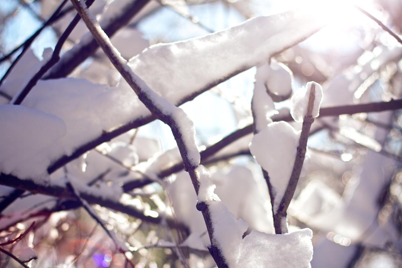 _MG_4045 - 2013-02-09 at 16-28-09.jpg