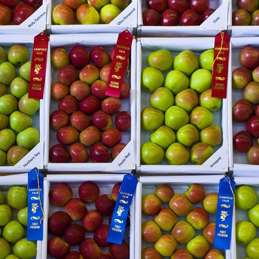 delicious fair apples