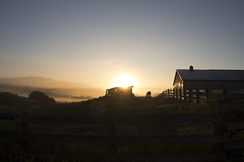 9 7 raw sunrise in amish country.jpg