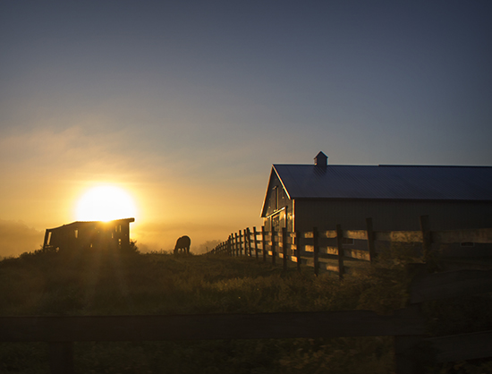 9 7 cooked sunrise in amish country.jpg