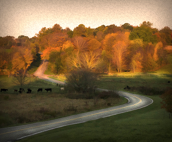 10 29 cooked road winding through the country.jpg