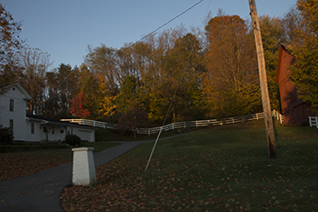 11 1 raw fence in the autumn trees.jpg