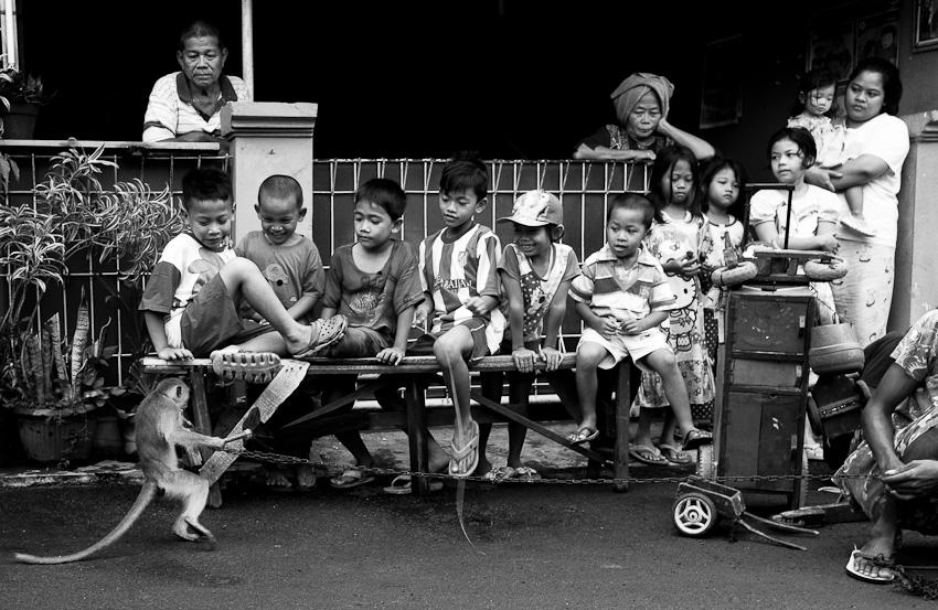 Children & Monkey, Lenteng Agung, July 2014