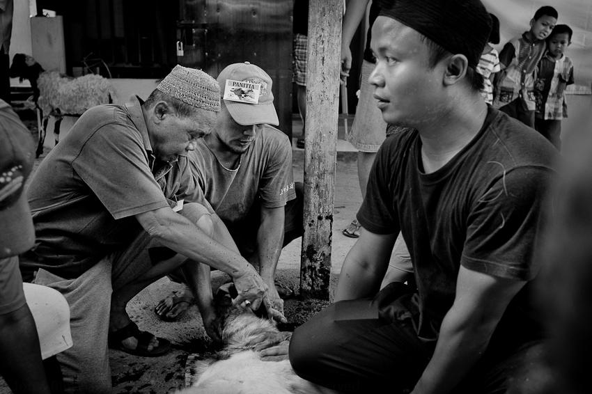 Jakarta Sept 2016-41.jpg