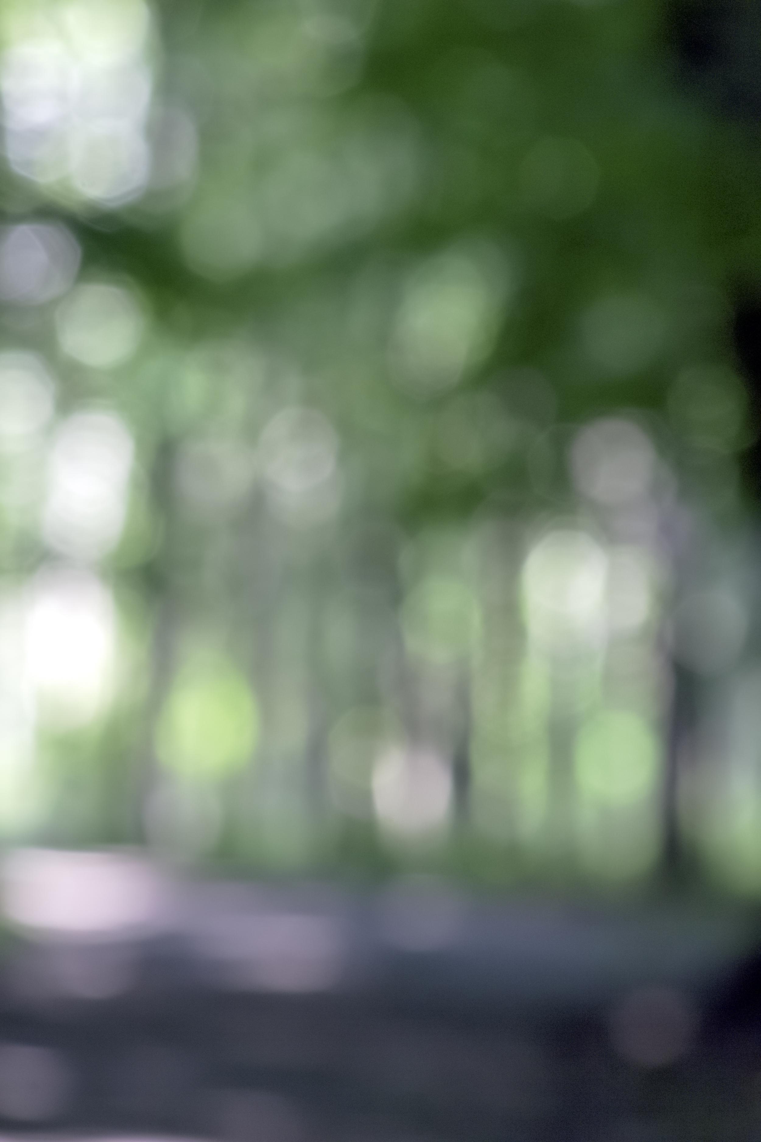 misc--2.jpg
