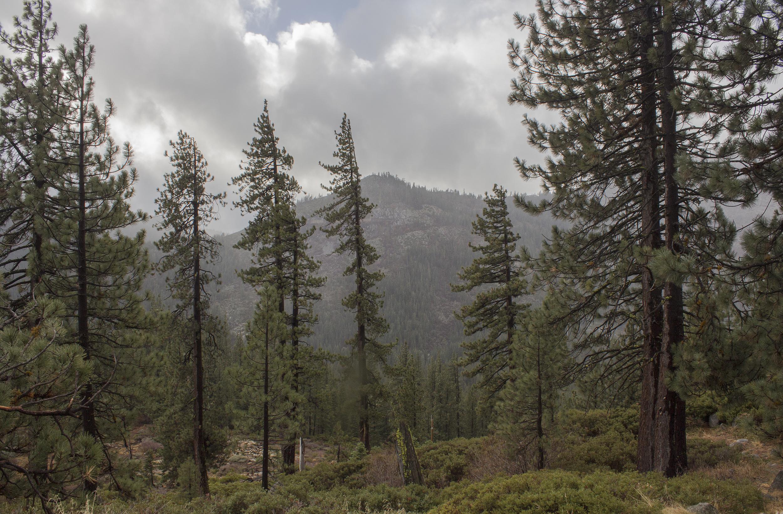 Lake Tahoe-6.jpg