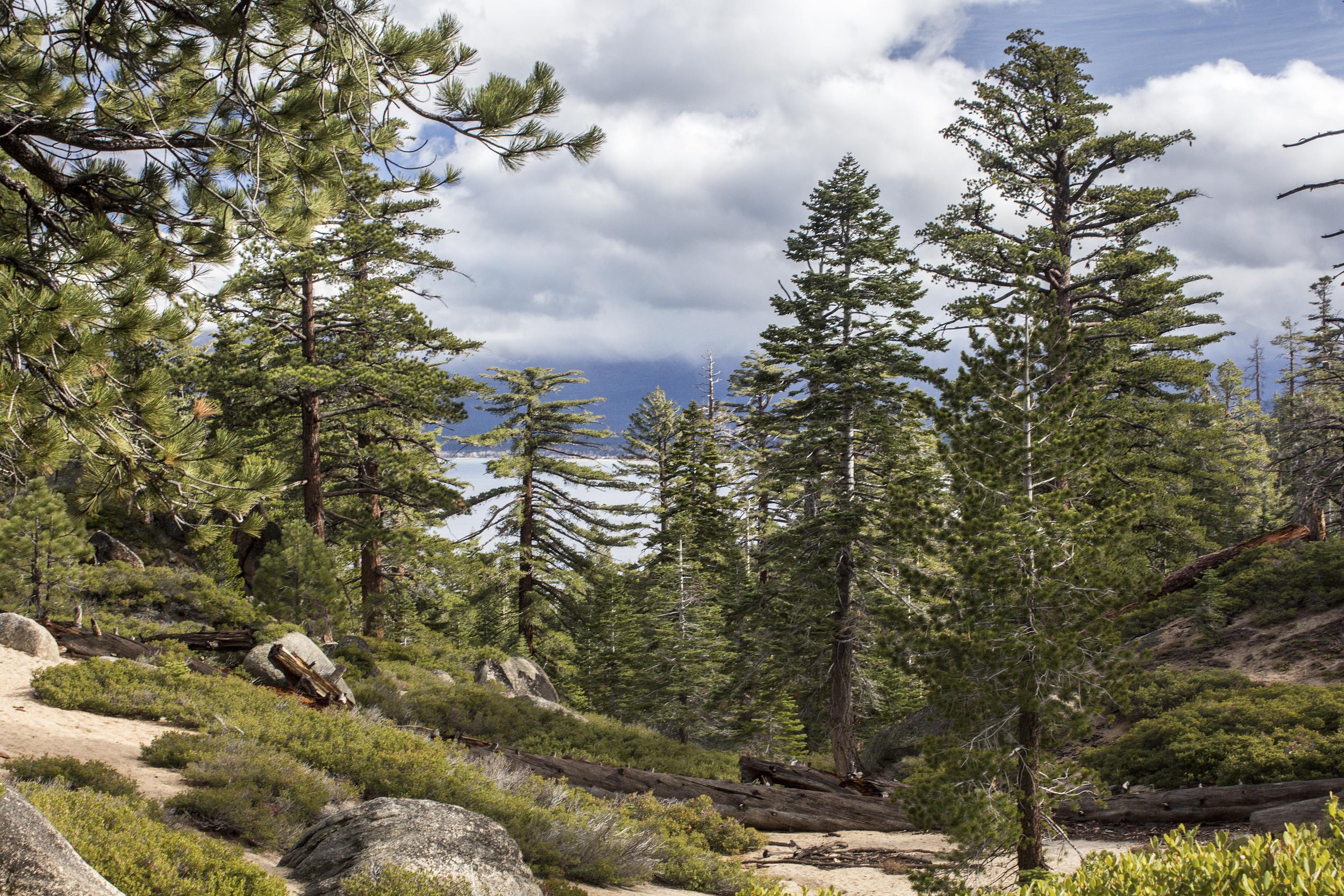 Lake Tahoe-27.jpg