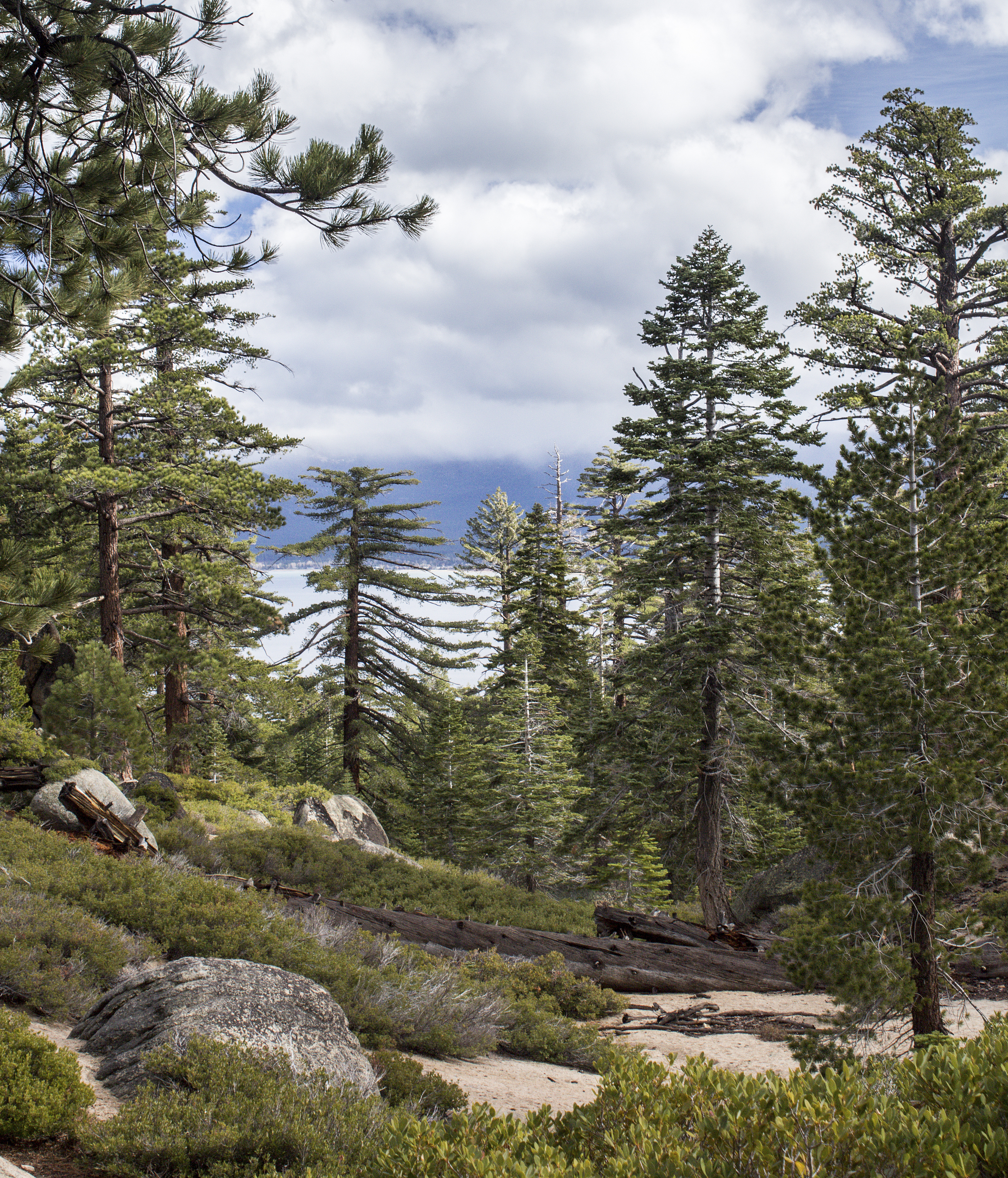 Lake Tahoe-28.jpg