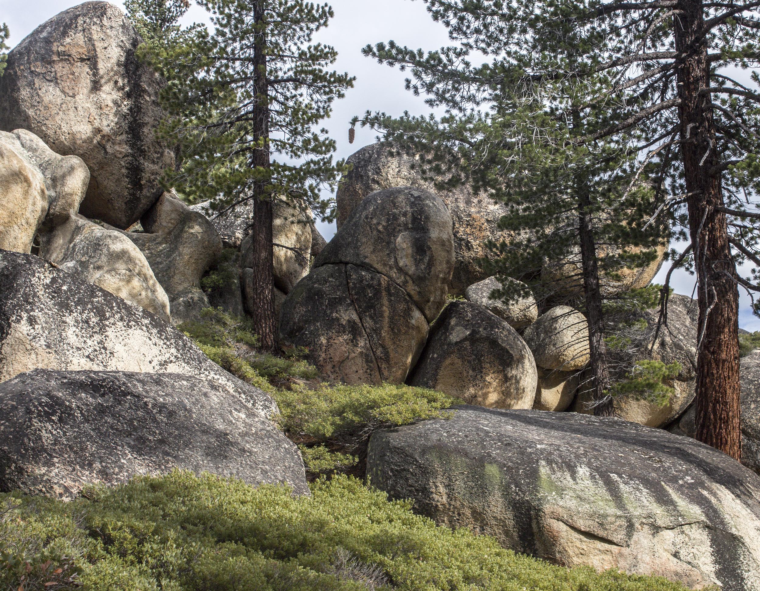 Lake Tahoe-29.jpg