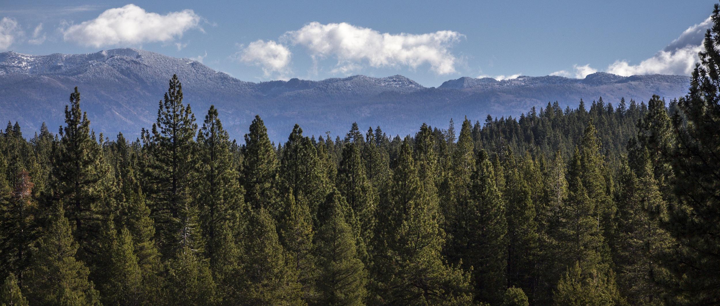 Lake Tahoe-59.jpg