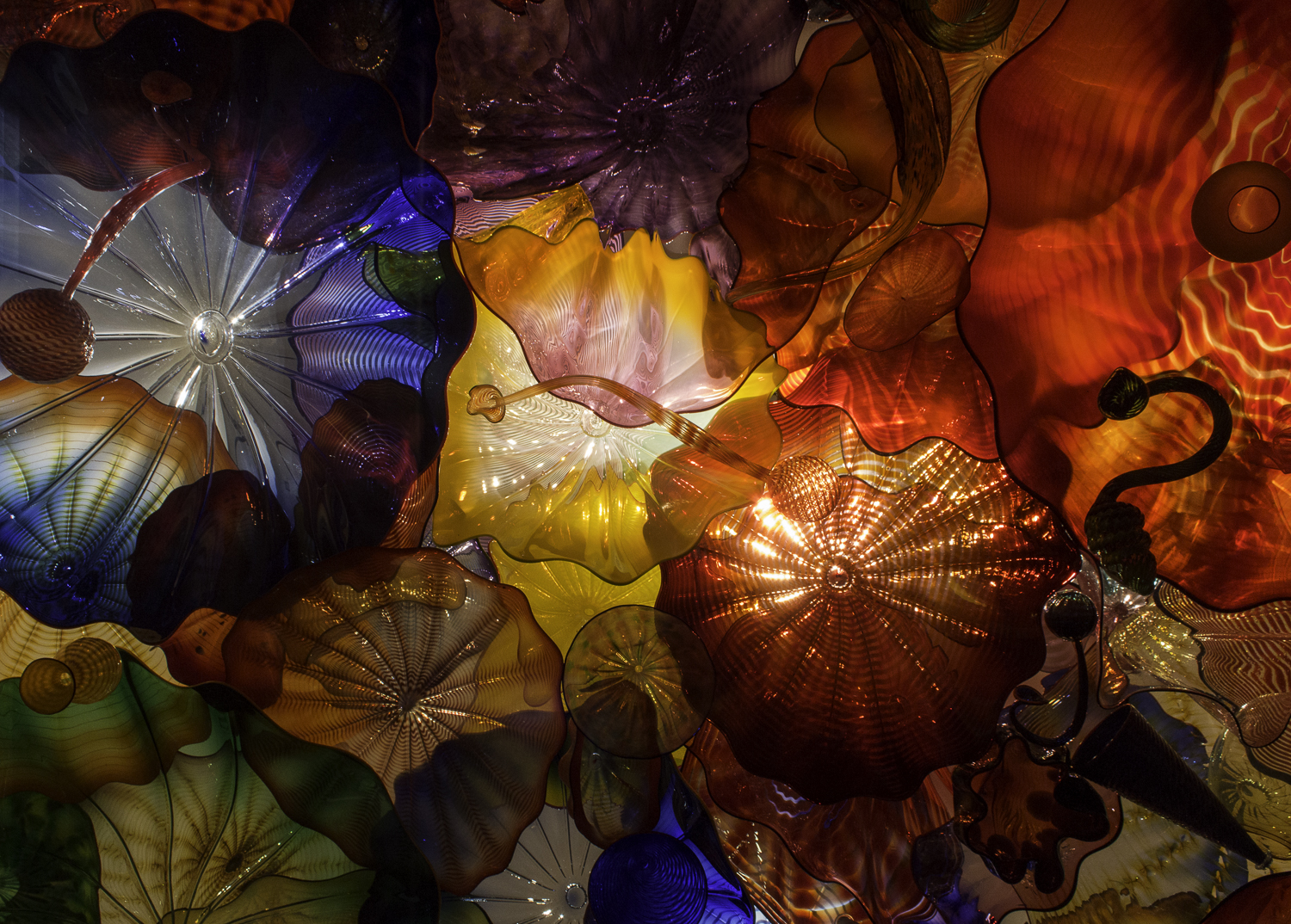 Chihuly Glass Museum-18.jpg