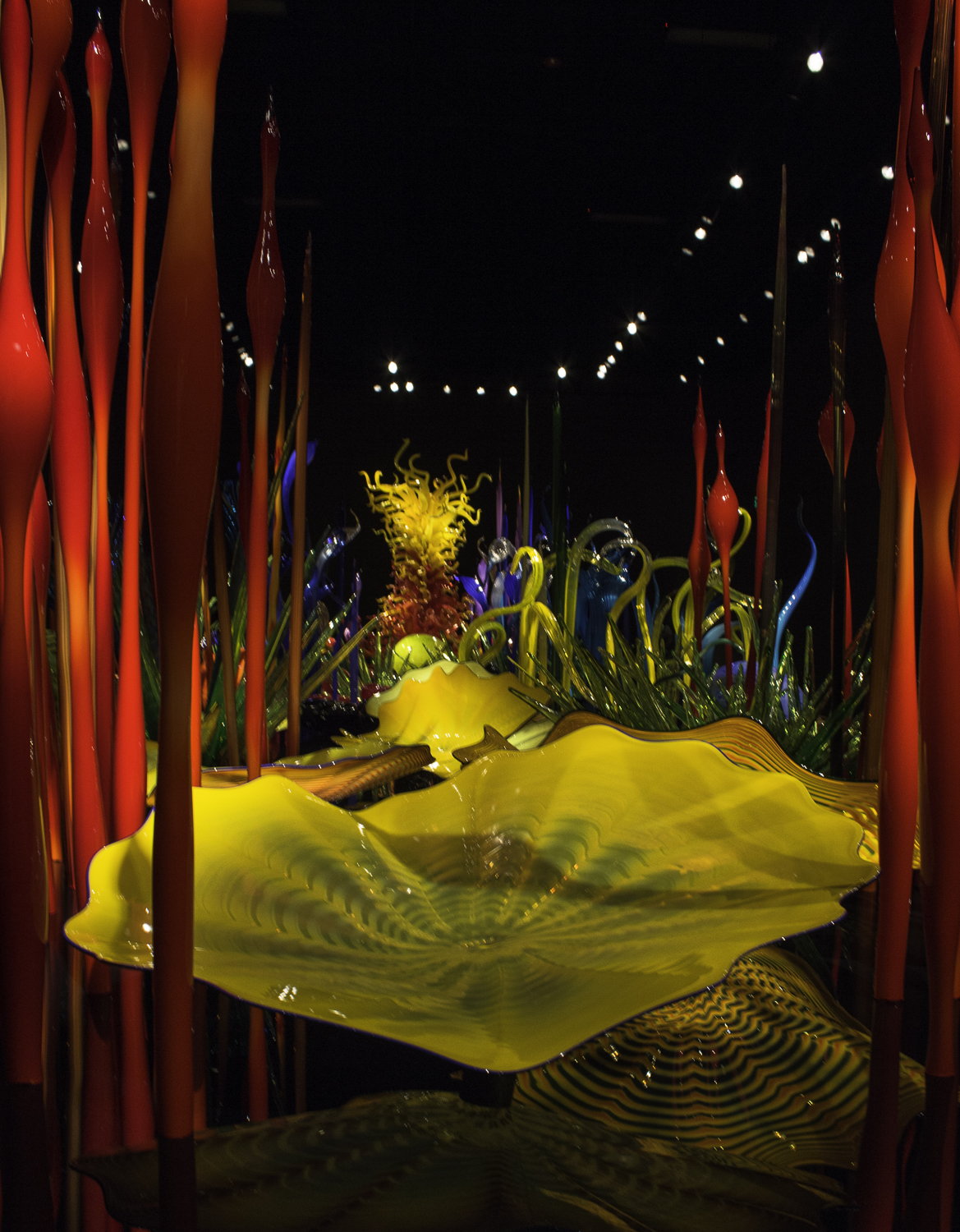 Chihuly Glass Museum-20.jpg