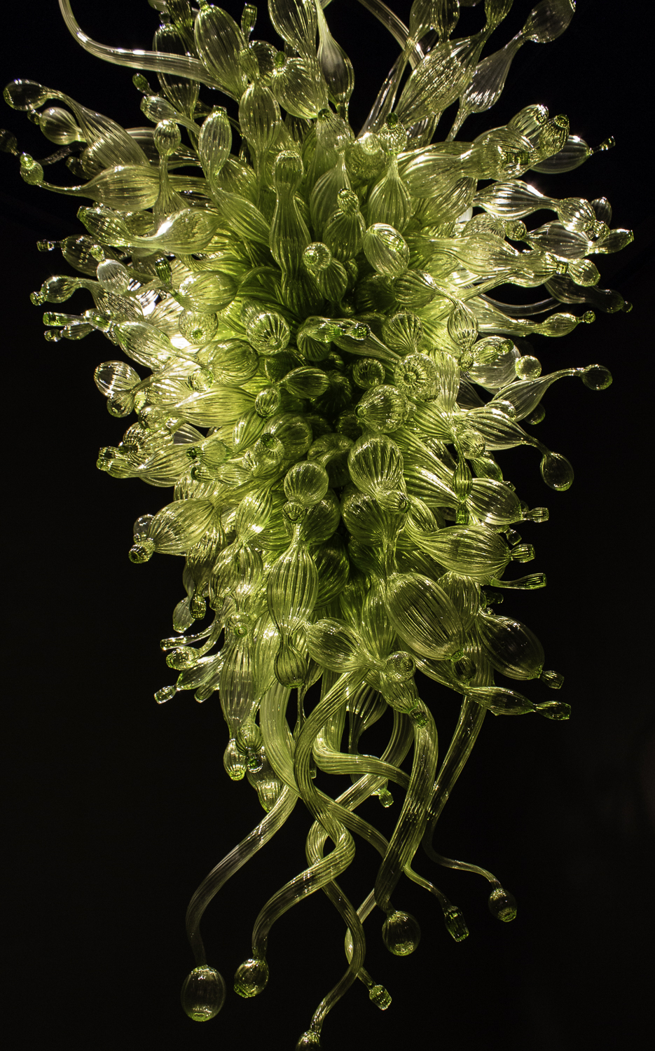 Chihuly Glass Museum-32.jpg