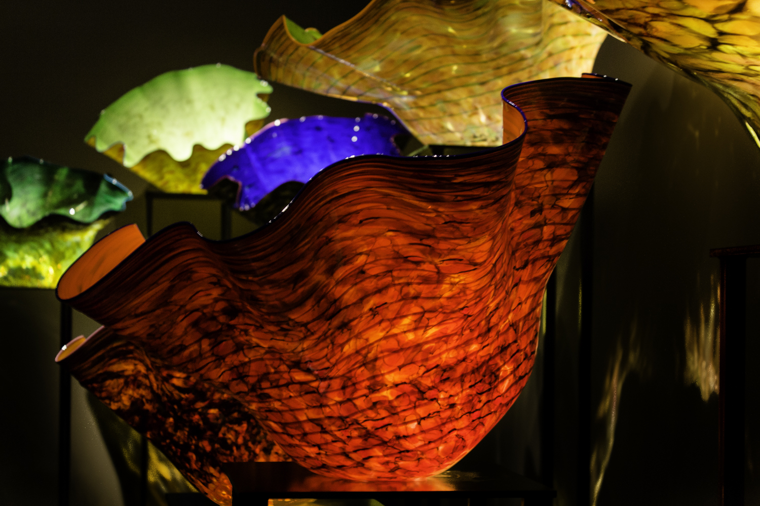 Chihuly Glass Museum-37.jpg