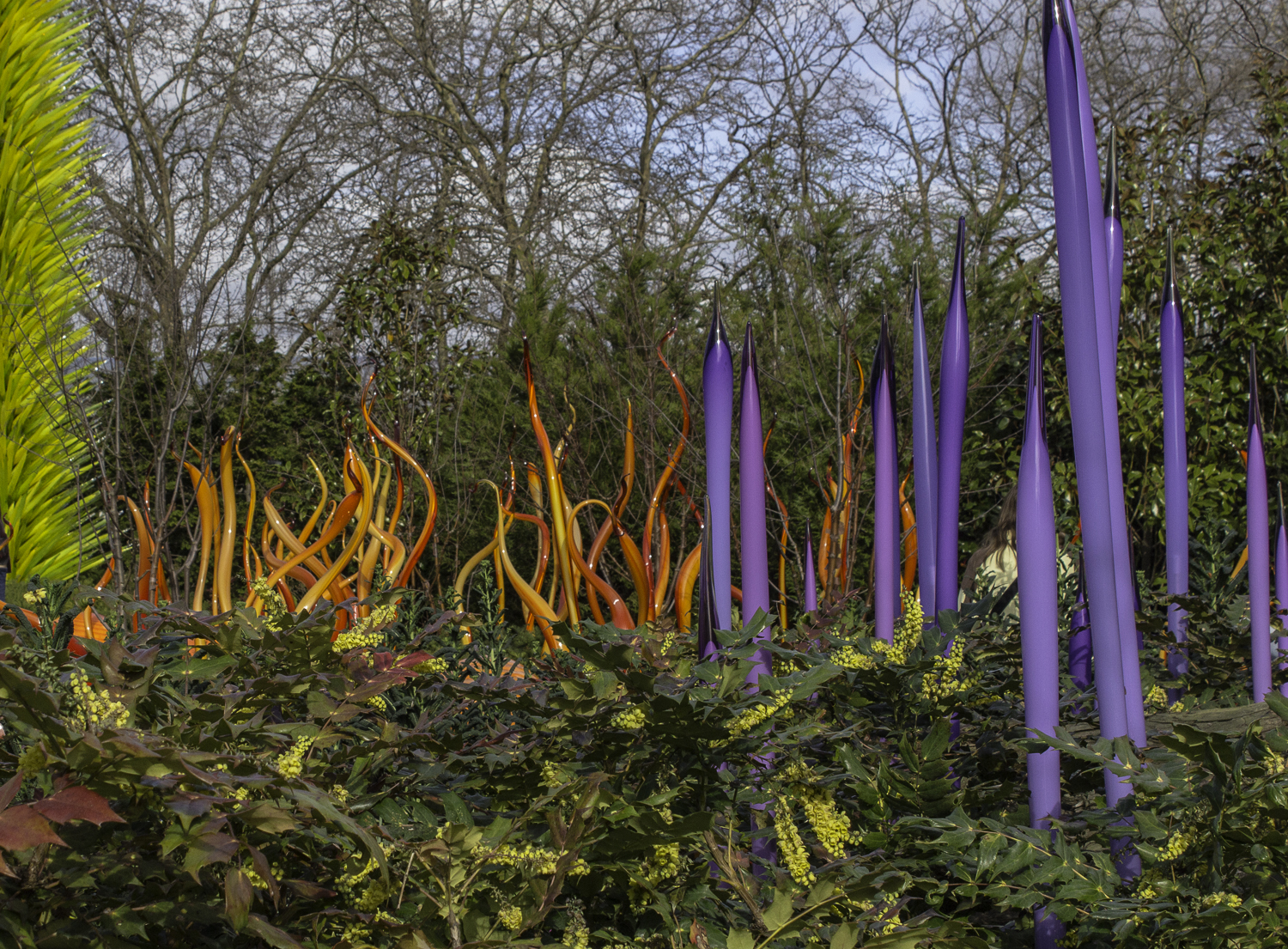 Chihuly Glass Museum-52.jpg