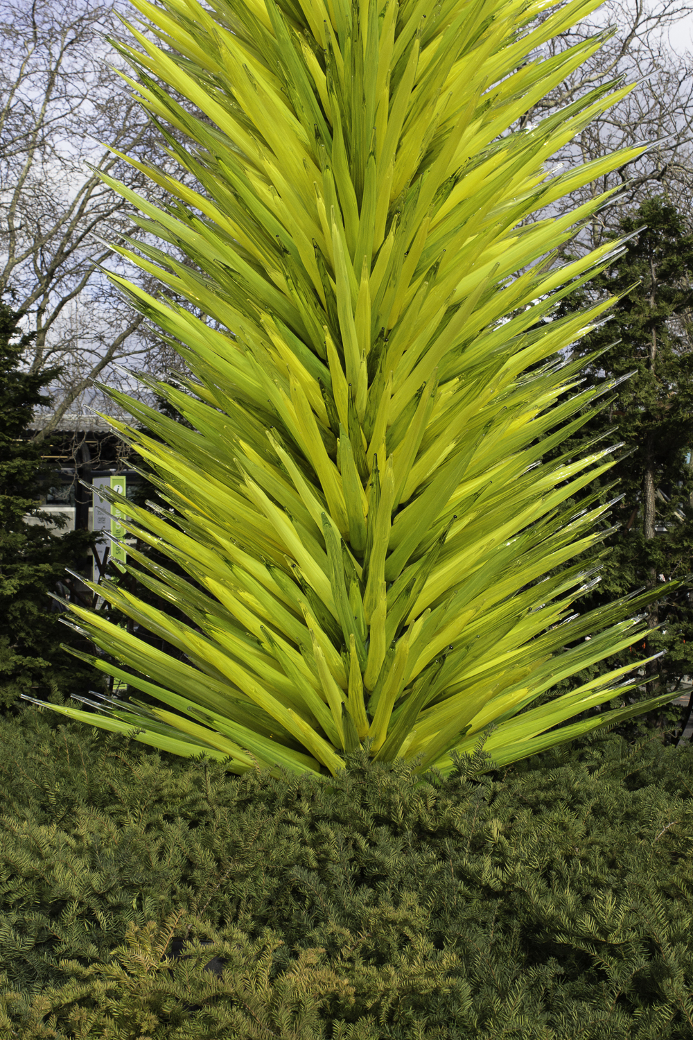 Chihuly Glass Museum-55.jpg
