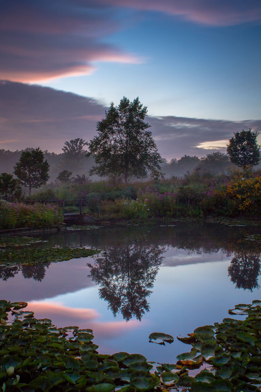 Mist-3.jpg