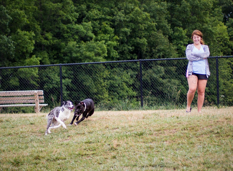 Canine Meadows-8.jpg