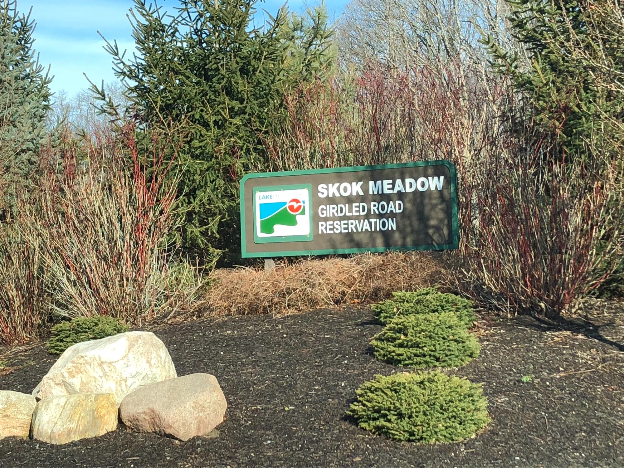 Skok Meadow-0710.jpg