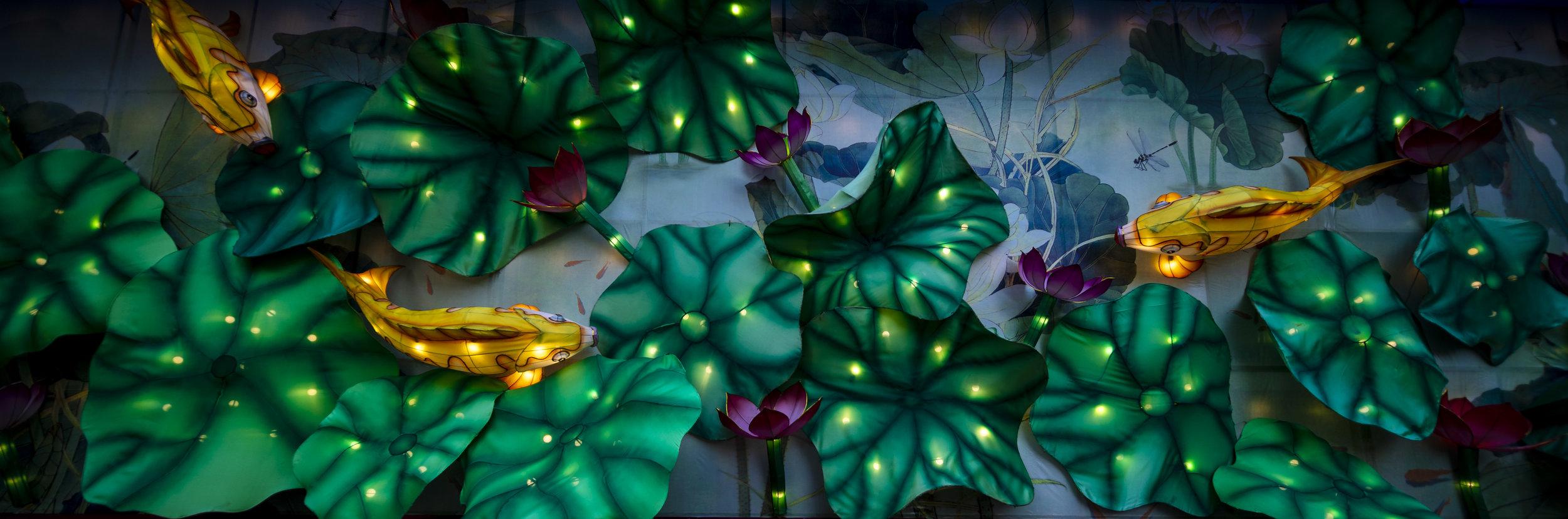 Asian Lanterns2.jpg