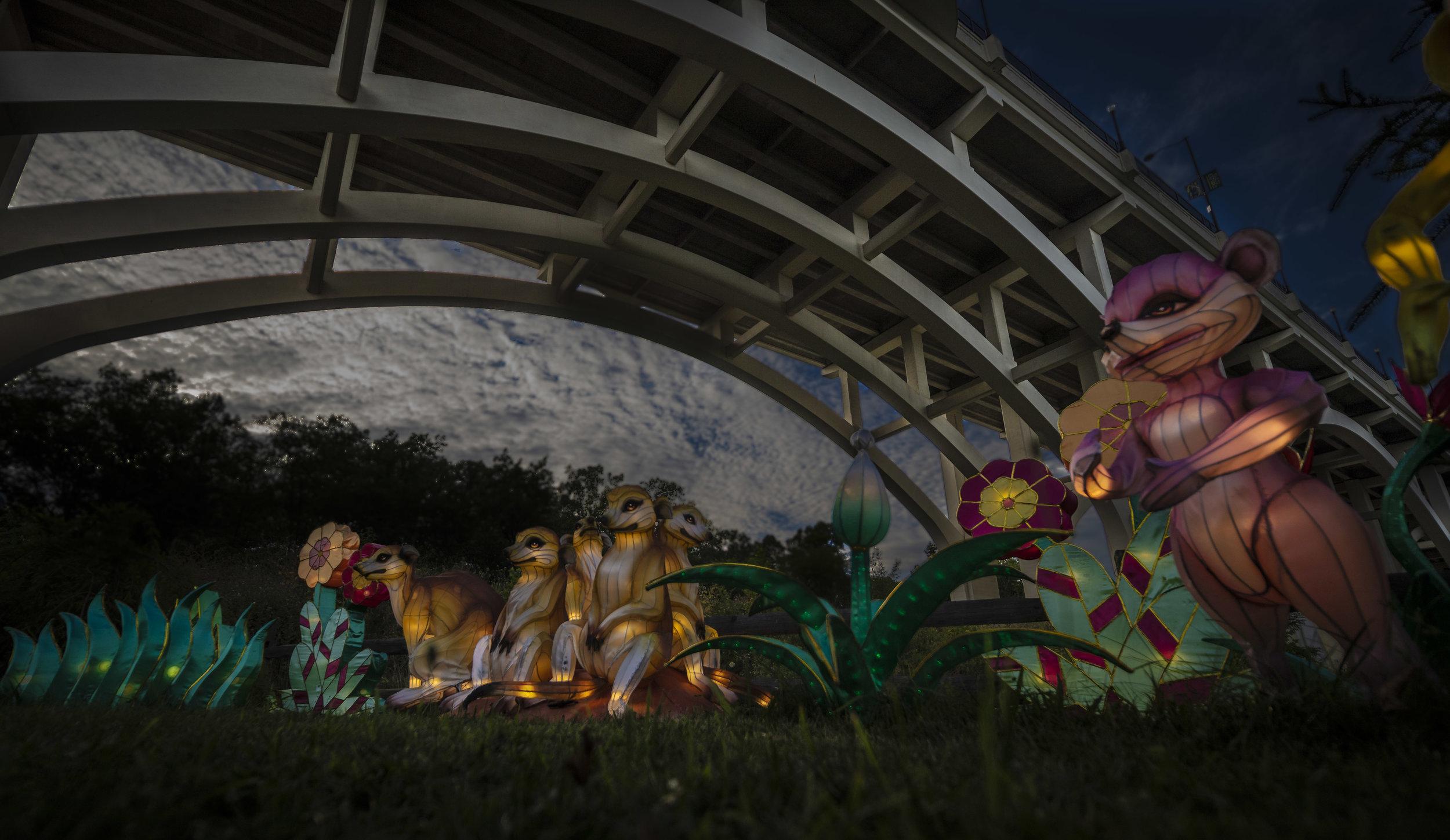 Asian Lanterns5.jpg