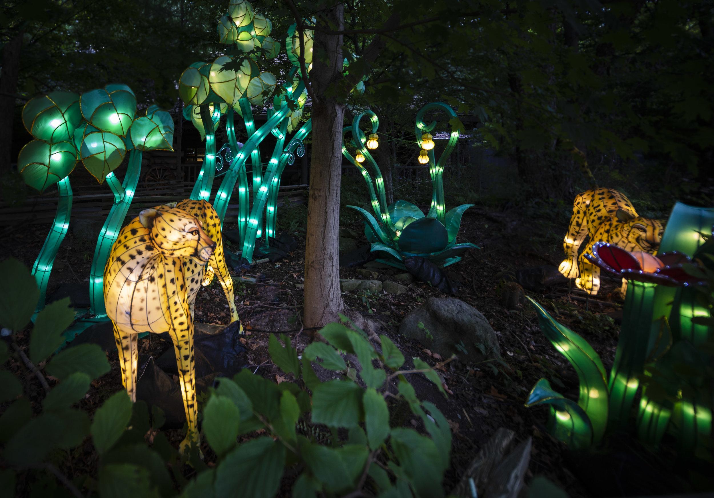 Asian Lanterns11.jpg