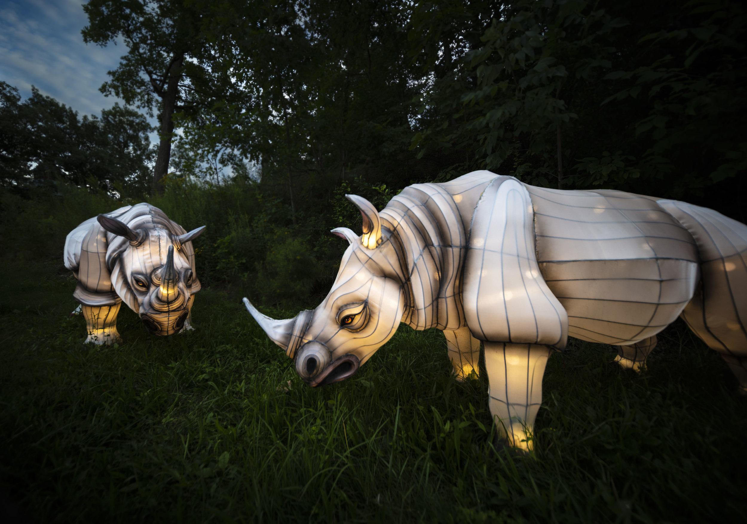 Asian Lanterns13.jpg