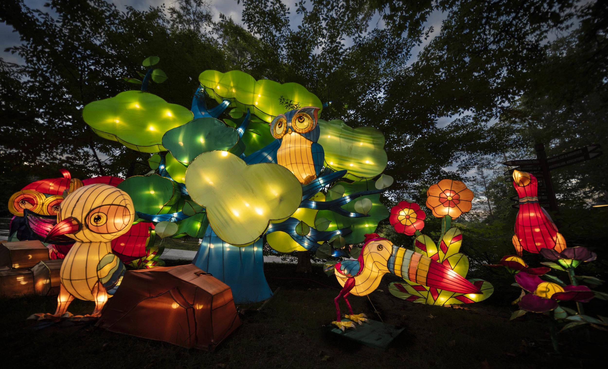 Asian Lanterns19.jpg