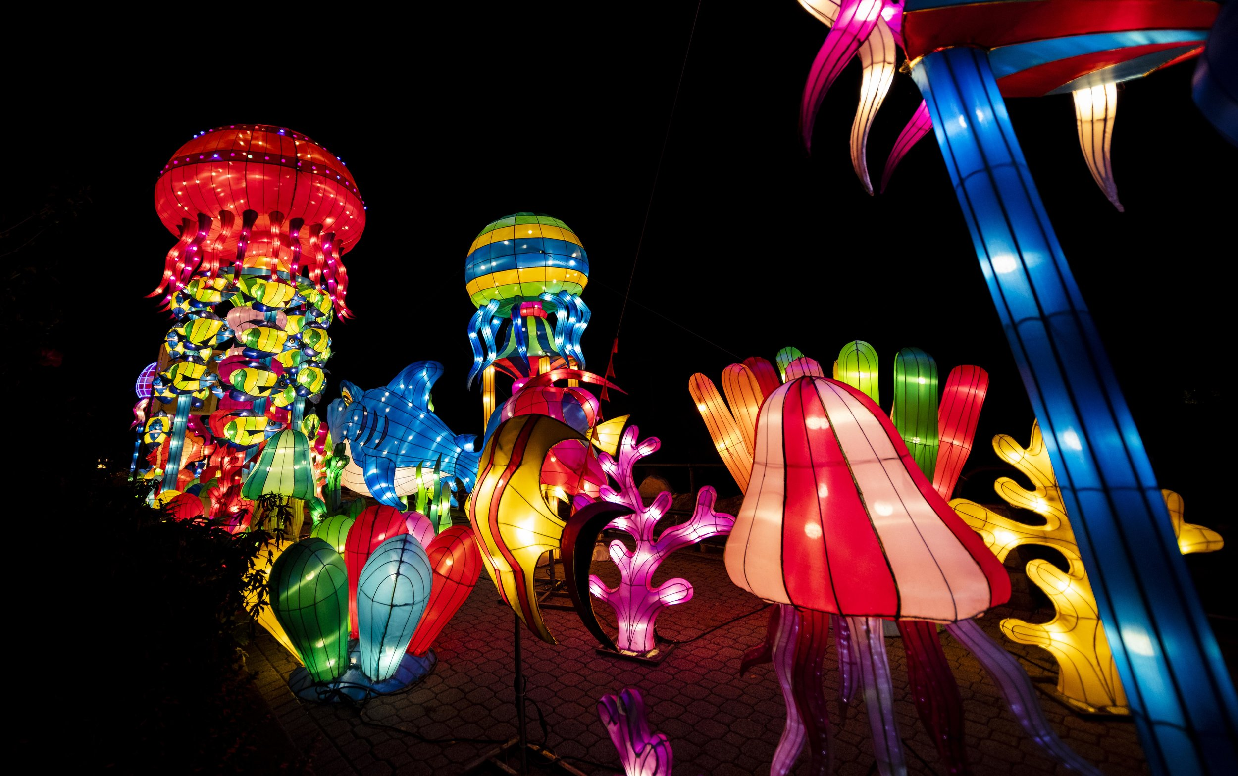 Asian Lanterns37.jpg